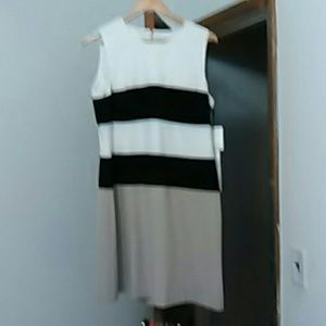 Calvin Klein brand new size 12 color block dress
